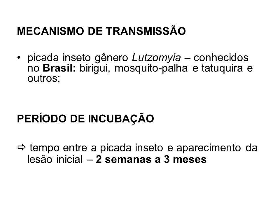 MECANISMO DE TRANSMISSÃO picada inseto gênero Lutzomyia – conhecidos no Brasil: birigui, mosquito-palha e tatuquira e outros; PERÍODO DE INCUBAÇÃO tempo entre a picada inseto e aparecimento da lesão inicial – 2 semanas a 3 meses