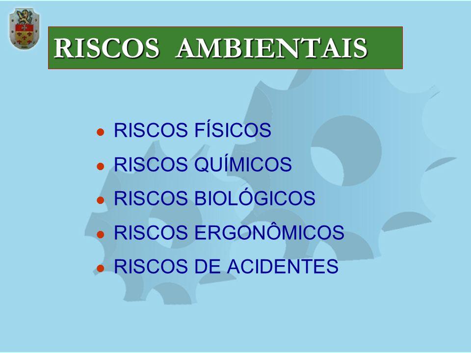RISCOS AMBIENTAIS RISCOS FÍSICOS RISCOS QUÍMICOS RISCOS BIOLÓGICOS RISCOS ERGONÔMICOS RISCOS DE ACIDENTES