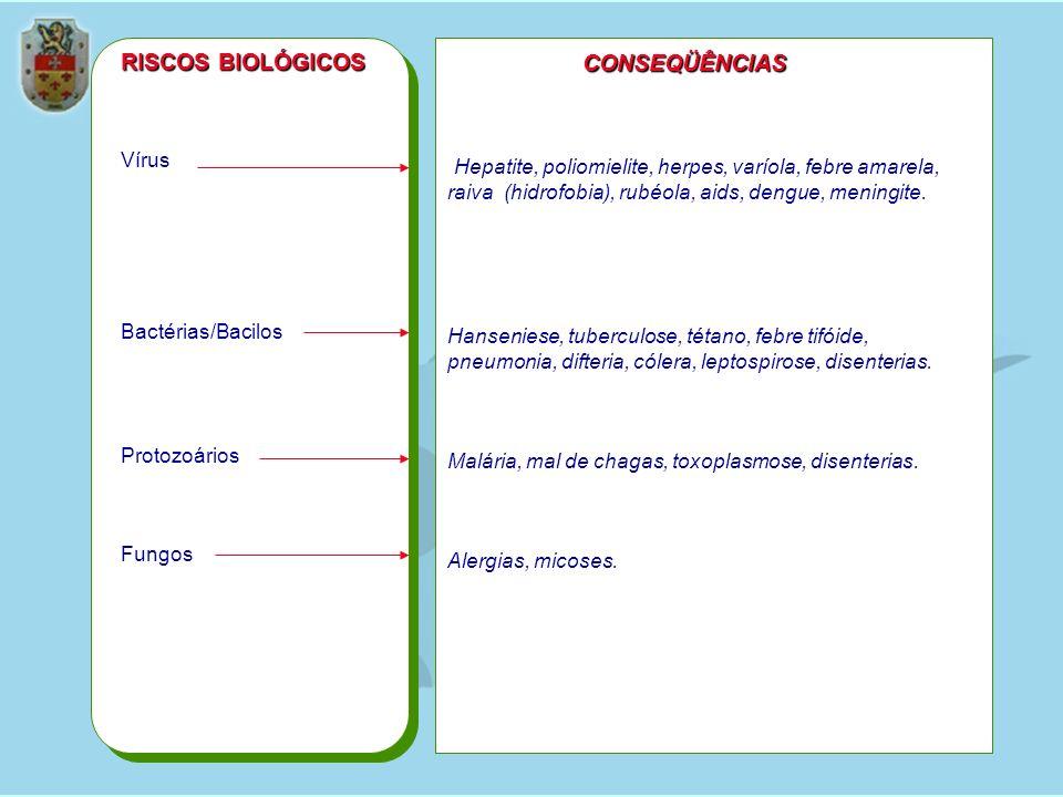 Vírus Bactérias/Bacilos Protozoários Fungos RISCOS BIOLÓGICOS CONSEQÜÊNCIAS Hepatite, poliomielite, herpes, varíola, febre amarela, raiva (hidrofobia)