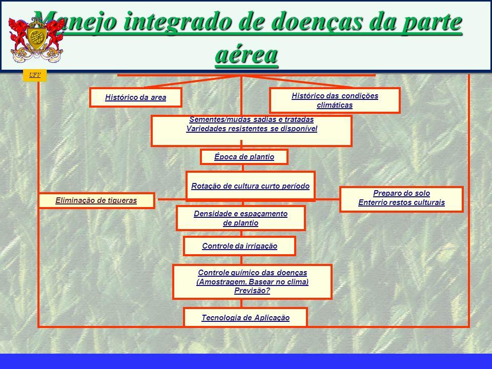 mzuppi.cursos@gmail.com Educação e Treinamento do Homem do Campo Manejo Integrado das Doenças da Parte Aérea Histórico da area Histórico das condições