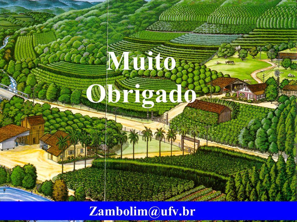 mzuppi.cursos@gmail.com Educação e Treinamento do Homem do Campo Muito Obrigado Zambolim@ufv.br