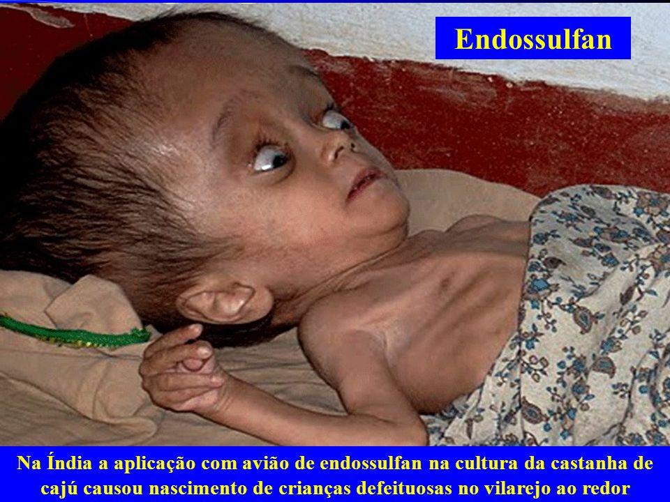 Endossulfan Na Índia a aplicação com avião de endossulfan na cultura da castanha de cajú causou nascimento de crianças defeituosas no vilarejo ao redo