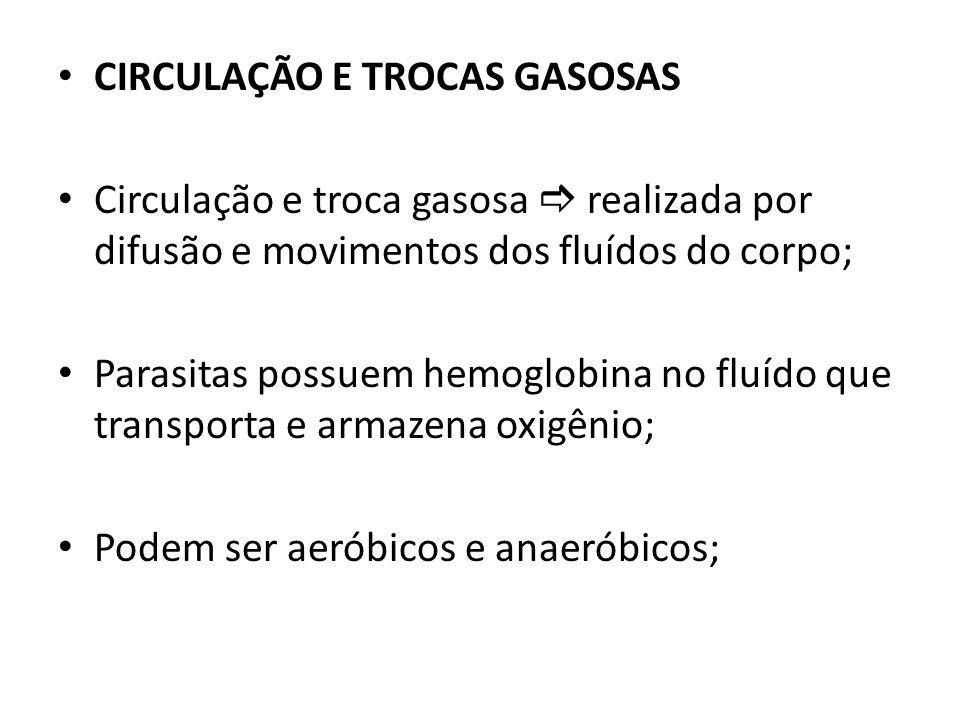 CIRCULAÇÃO E TROCAS GASOSAS Circulação e troca gasosa realizada por difusão e movimentos dos fluídos do corpo; Parasitas possuem hemoglobina no fluído
