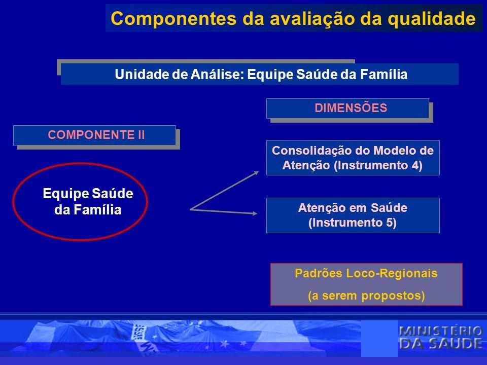 COMPONENTE II Componentes da avaliação da qualidade Unidade de Análise: Equipe Saúde da Família DIMENSÕES Equipe Saúde da Família Padrões Loco-Regionais (a serem propostos) Atenção em Saúde (Instrumento 5) Consolidação do Modelo de Atenção (Instrumento 4)