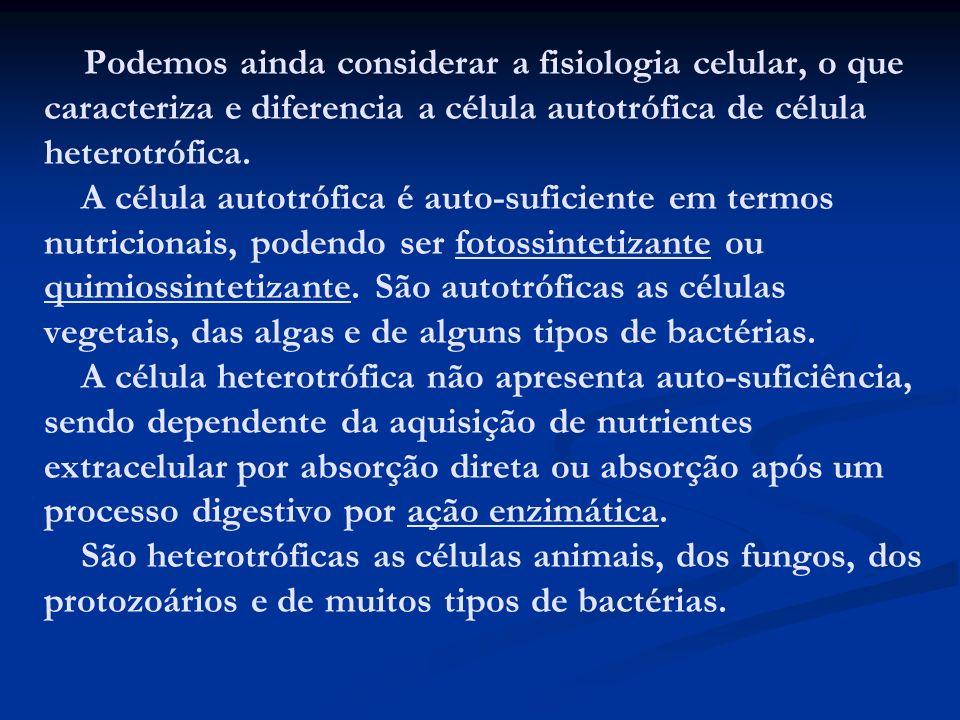 Podemos ainda considerar a fisiologia celular, o que caracteriza e diferencia a célula autotrófica de célula heterotrófica. A célula autotrófica é aut