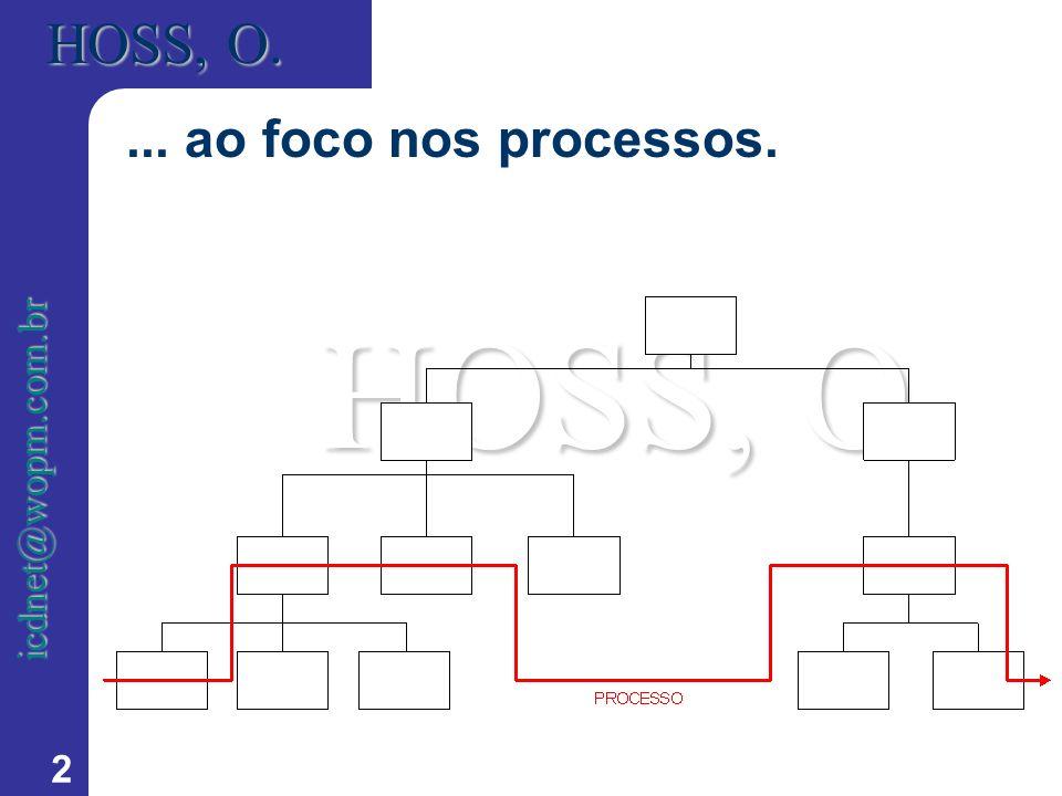 2 HOSS, O. icdnet@wopm.com.br... ao foco nos processos.