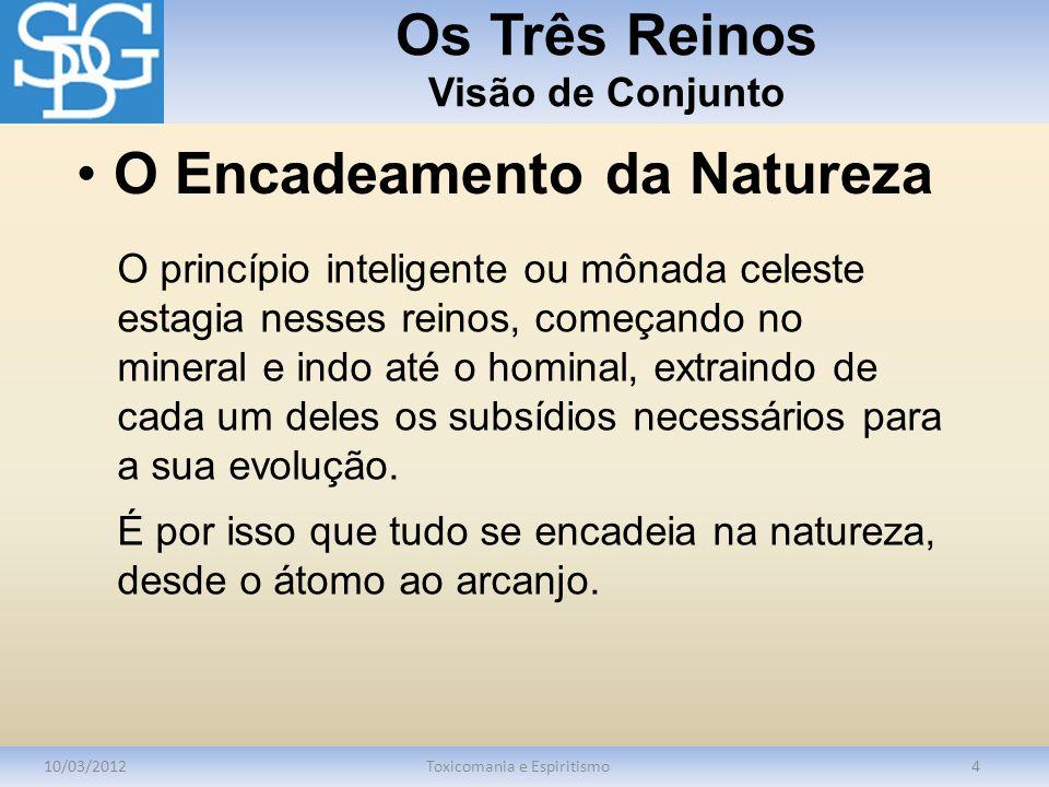 Os Três Reinos Visão de Conjunto 10/03/2012Toxicomania e Espiritismo4 O princípio inteligente ou mônada celeste estagia nesses reinos, começando no mi