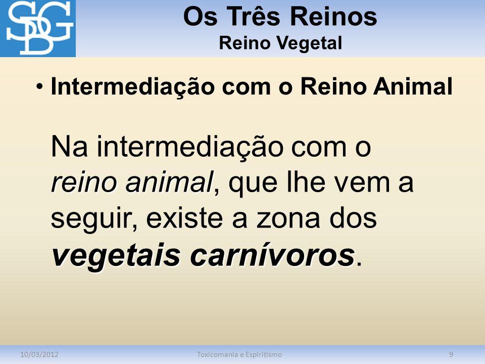 Os Três Reinos Reino Vegetal 10/03/2012Toxicomania e Espiritismo9 reino animal vegetais carnívoros Na intermediação com o reino animal, que lhe vem a seguir, existe a zona dos vegetais carnívoros.