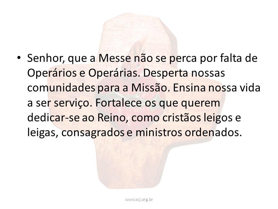 Senhor, que a Messe não se perca por falta de Operários e Operárias. Desperta nossas comunidades para a Missão. Ensina nossa vida a ser serviço. Forta