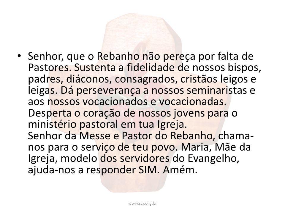 Senhor, que o Rebanho não pereça por falta de Pastores. Sustenta a fidelidade de nossos bispos, padres, diáconos, consagrados, cristãos leigos e leiga