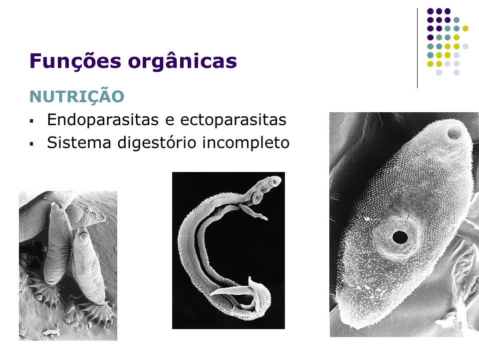 Funções orgânicas NUTRIÇÃO Endoparasitas e ectoparasitas Sistema digestório incompleto