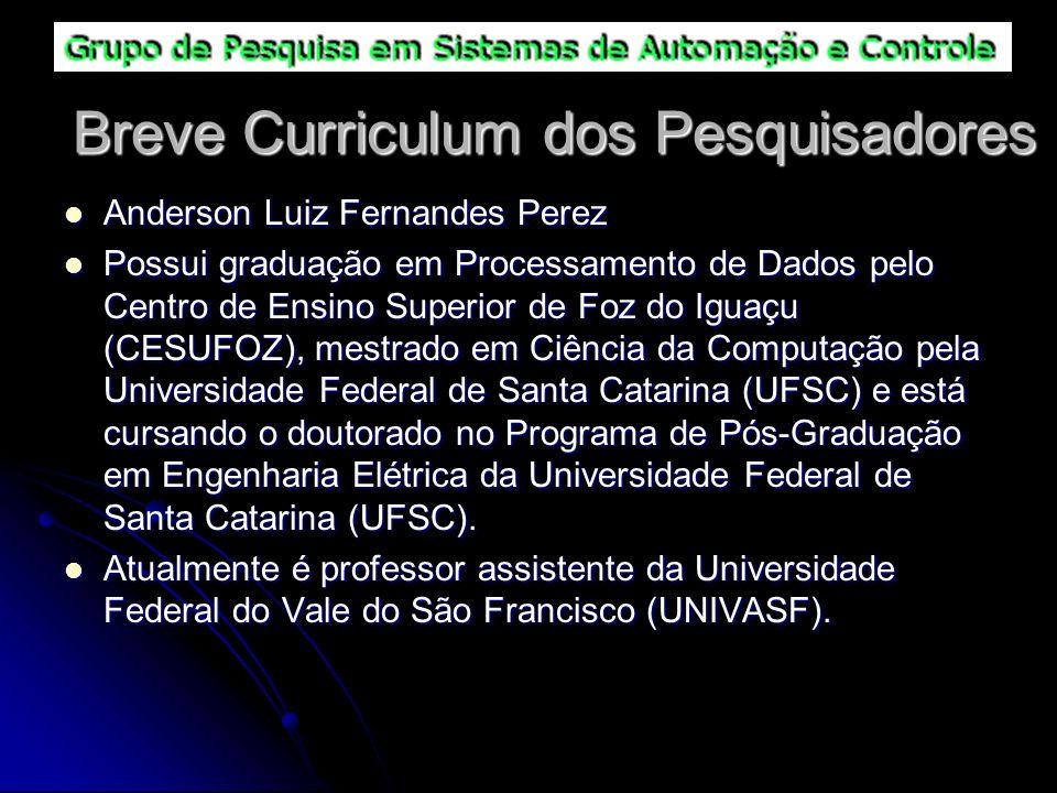 Breve Curriculum dos Pesquisadores Anderson Luiz Fernandes Perez Anderson Luiz Fernandes Perez Possui graduação em Processamento de Dados pelo Centro