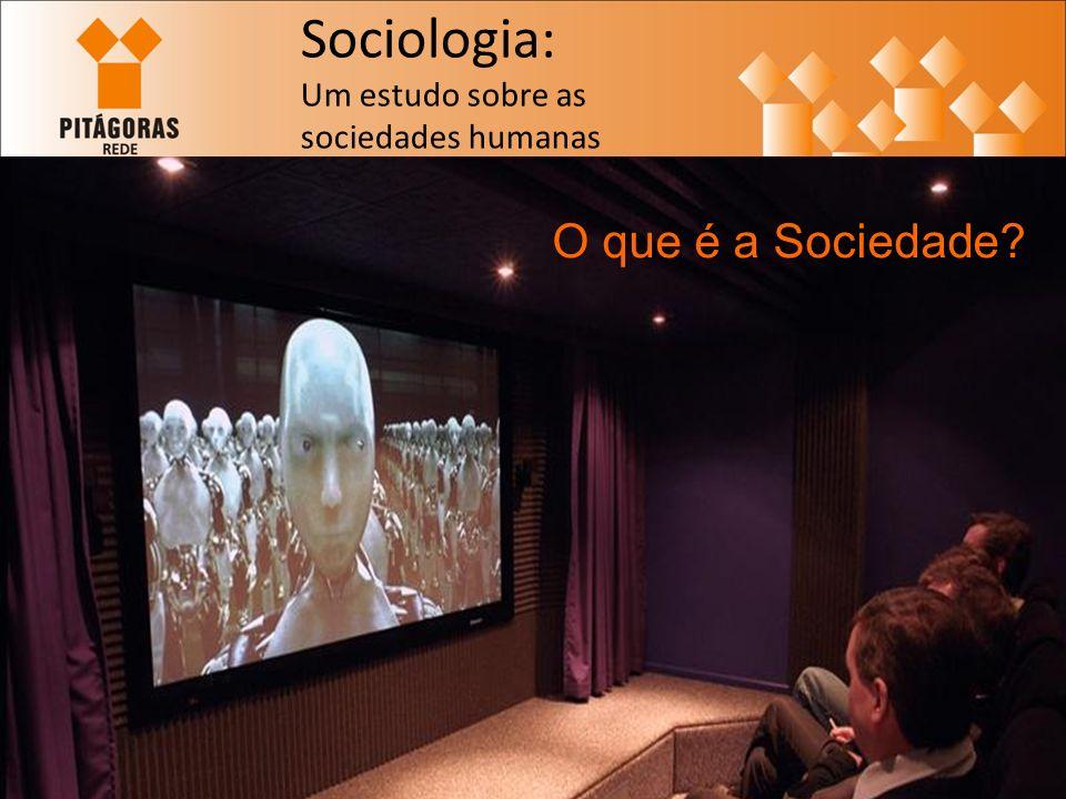 Sociologia: Um estudo sobre as sociedades humanas O que é a Sociedade?