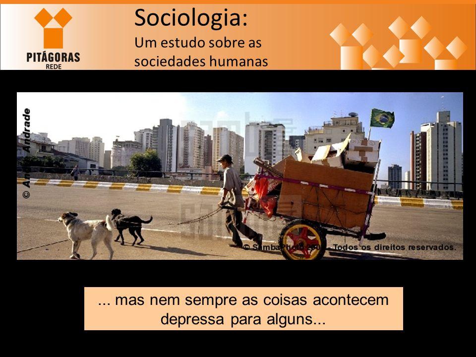 Sociologia: Um estudo sobre as sociedades humanas...