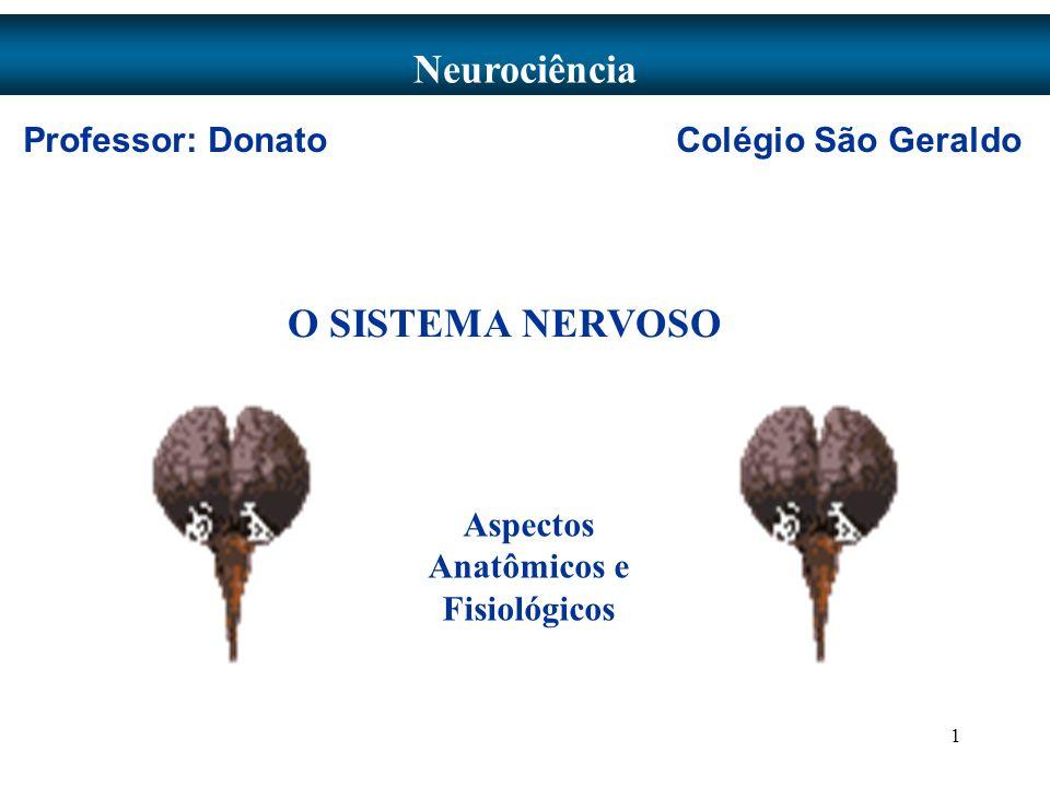 1 O SISTEMA NERVOSO Neurociência Aspectos Anatômicos e Fisiológicos Professor: Donato Colégio São Geraldo