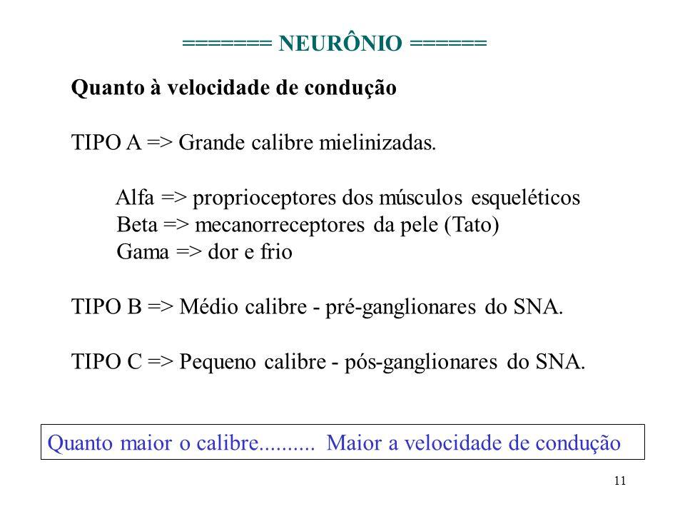 11 Quanto à velocidade de condução TIPO A => Grande calibre mielinizadas. Alfa => proprioceptores dos músculos esqueléticos Beta => mecanorreceptores