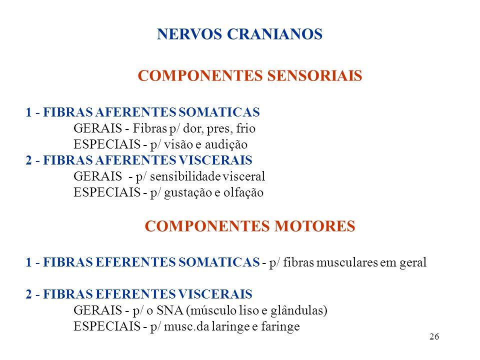 26 COMPONENTES SENSORIAIS 1 - FIBRAS AFERENTES SOMATICAS GERAIS - Fibras p/ dor, pres, frio ESPECIAIS - p/ visão e audição 2 - FIBRAS AFERENTES VISCER