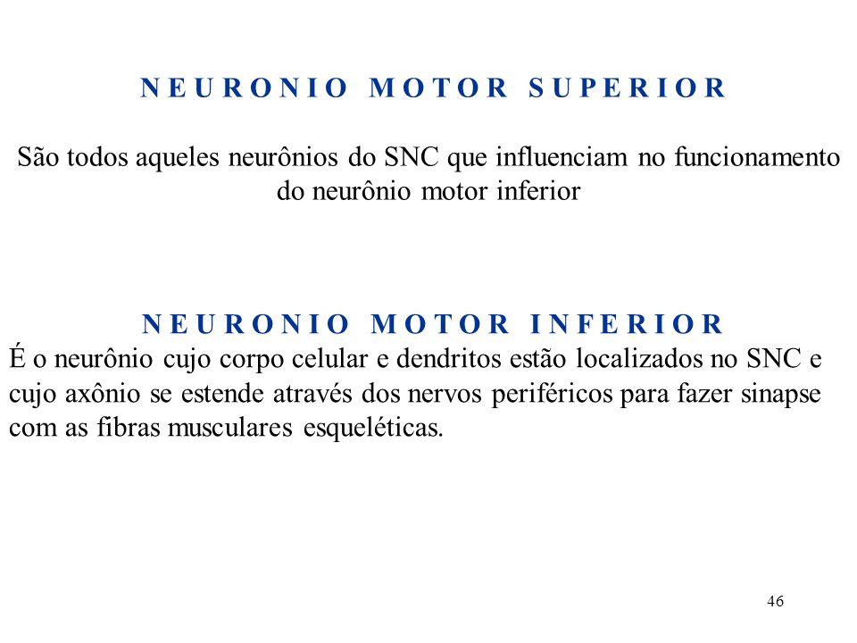 46 N E U R O N I O M O T O R S U P E R I O R São todos aqueles neurônios do SNC que influenciam no funcionamento do neurônio motor inferior N E U R O