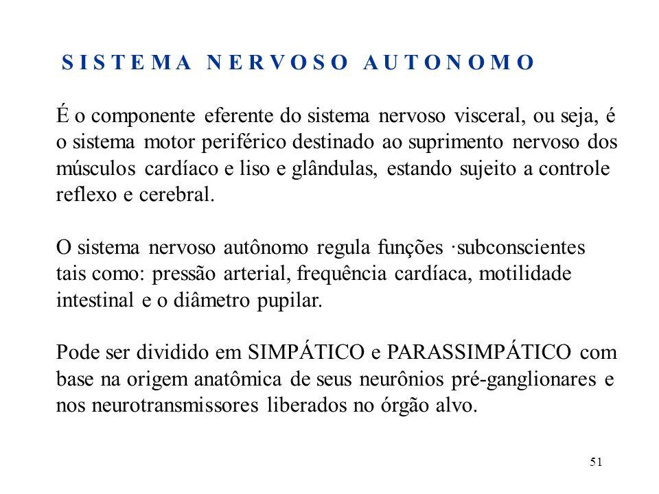 51 S I S T E M A N E R V O S O A U T O N O M O É o componente eferente do sistema nervoso visceral, ou seja, é o sistema motor periférico destinado ao