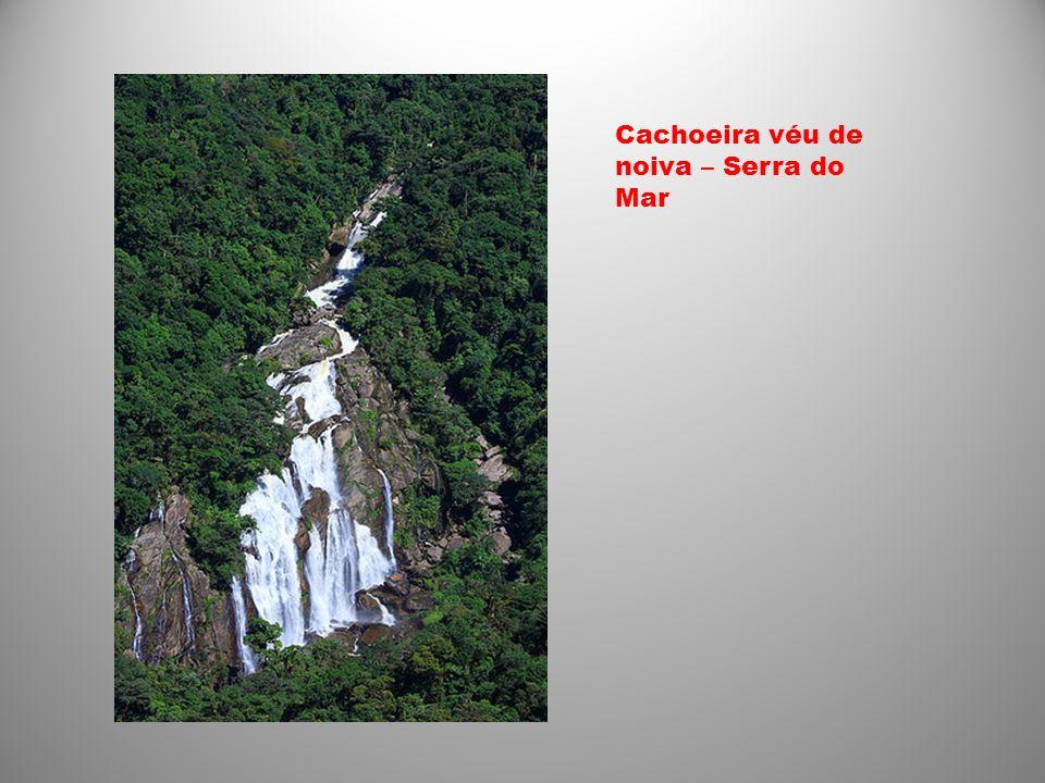 Cachoeira véu de noiva – Serra do Mar