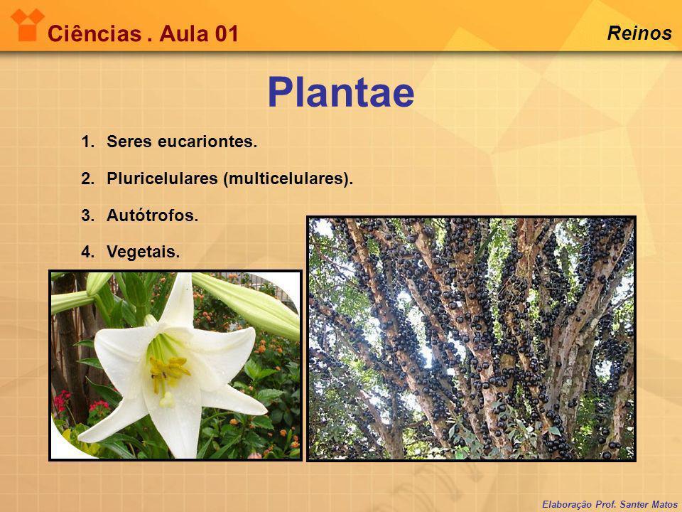 Elaboração Prof. Santer Matos Ciências. Aula 01 Reinos 1.Seres eucariontes. 2.Pluricelulares (multicelulares). 3.Autótrofos. 4.Vegetais. Plantae