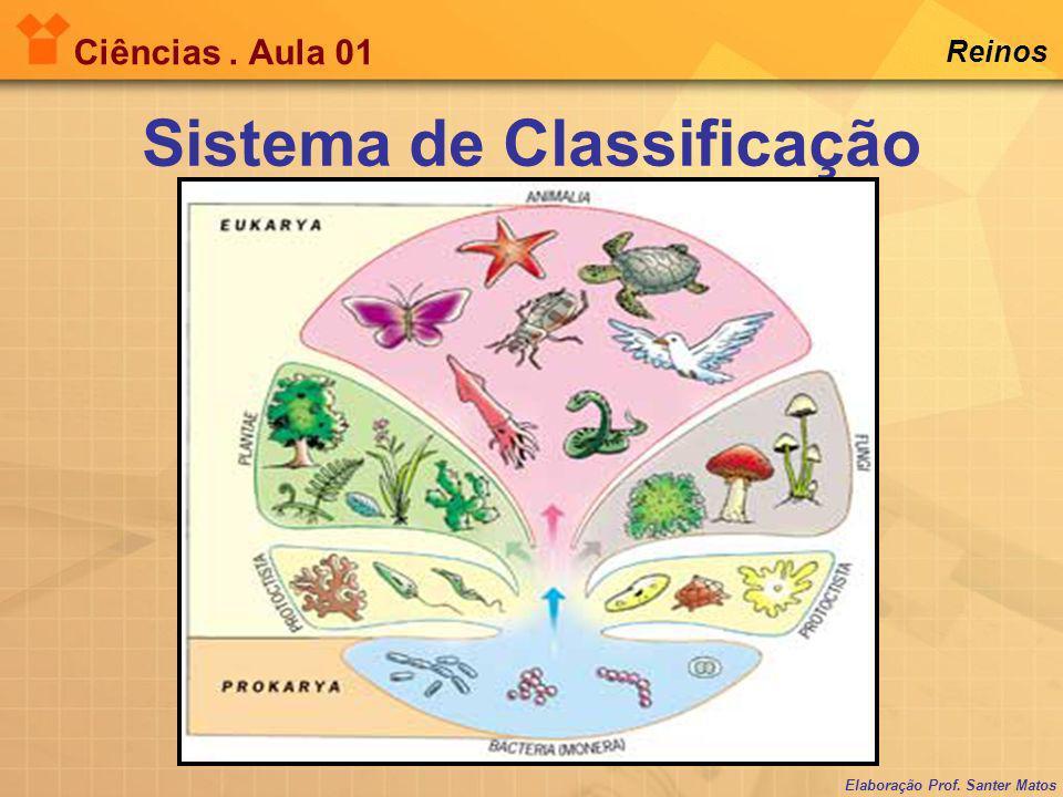 Elaboração Prof.Santer Matos Ciências. Aula 01 Reinos 1.Seres procariotas (célula procariótica).