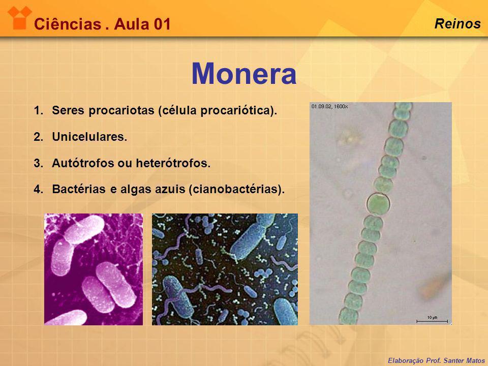 Elaboração Prof. Santer Matos Ciências. Aula 01 Reinos Tipos de bactérias