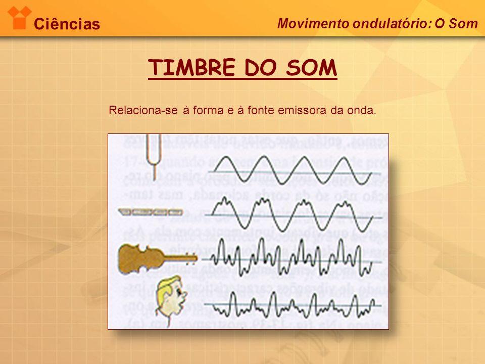 Ciências Movimento ondulatório: O Som TIMBRE DO SOM Relaciona-se à forma e à fonte emissora da onda.