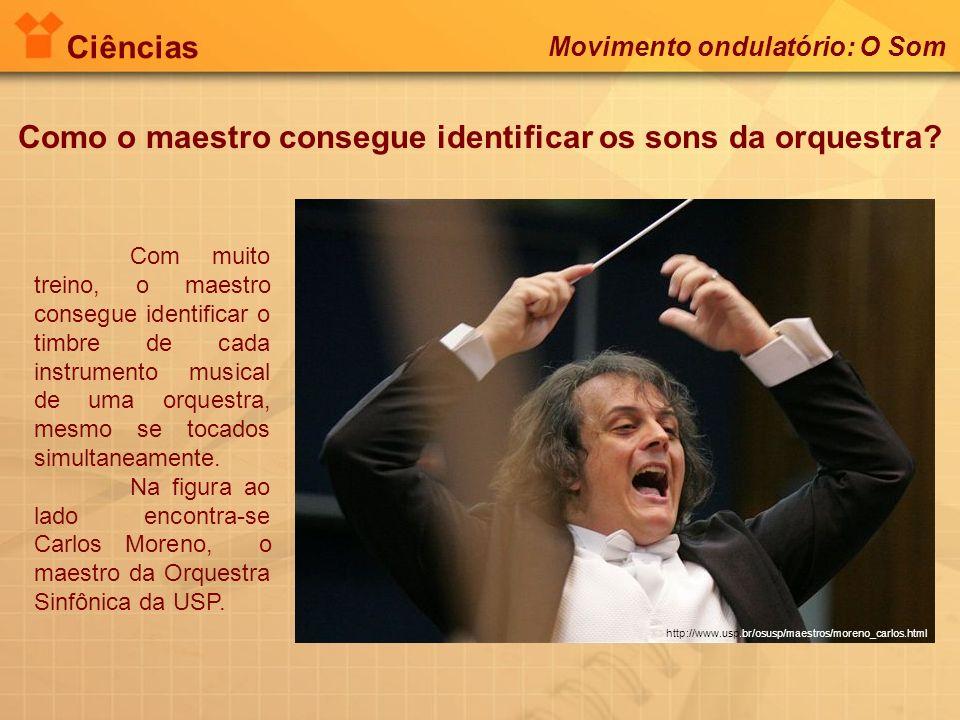 Ciências Como o maestro consegue identificar os sons da orquestra? Movimento ondulatório: O Som http://www.usp.br/osusp/maestros/moreno_carlos.html Co