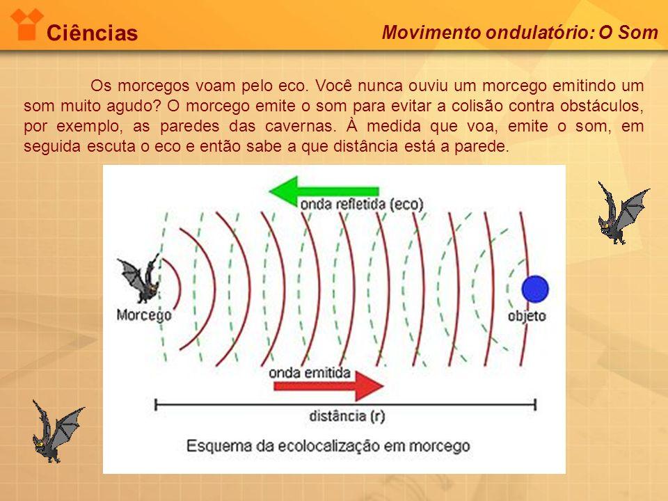 Ciências Movimento ondulatório: O Som Os morcegos voam pelo eco. Você nunca ouviu um morcego emitindo um som muito agudo? O morcego emite o som para e