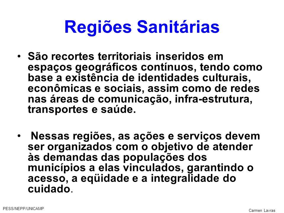 PESS/NEPP/UNICAMP Carmen Lavras Regiões Sanitárias São recortes territoriais inseridos em espaços geográficos contínuos, tendo como base a existência