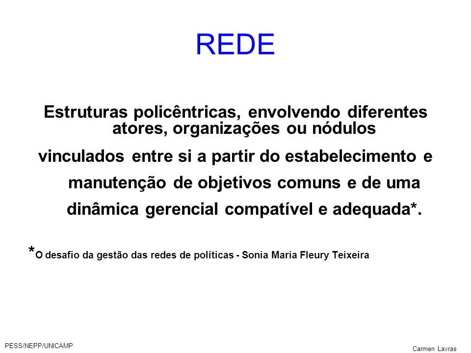 PESS/NEPP/UNICAMP Carmen Lavras REDE Estruturas policêntricas, envolvendo diferentes atores, organizações ou nódulos vinculados entre si a partir do e