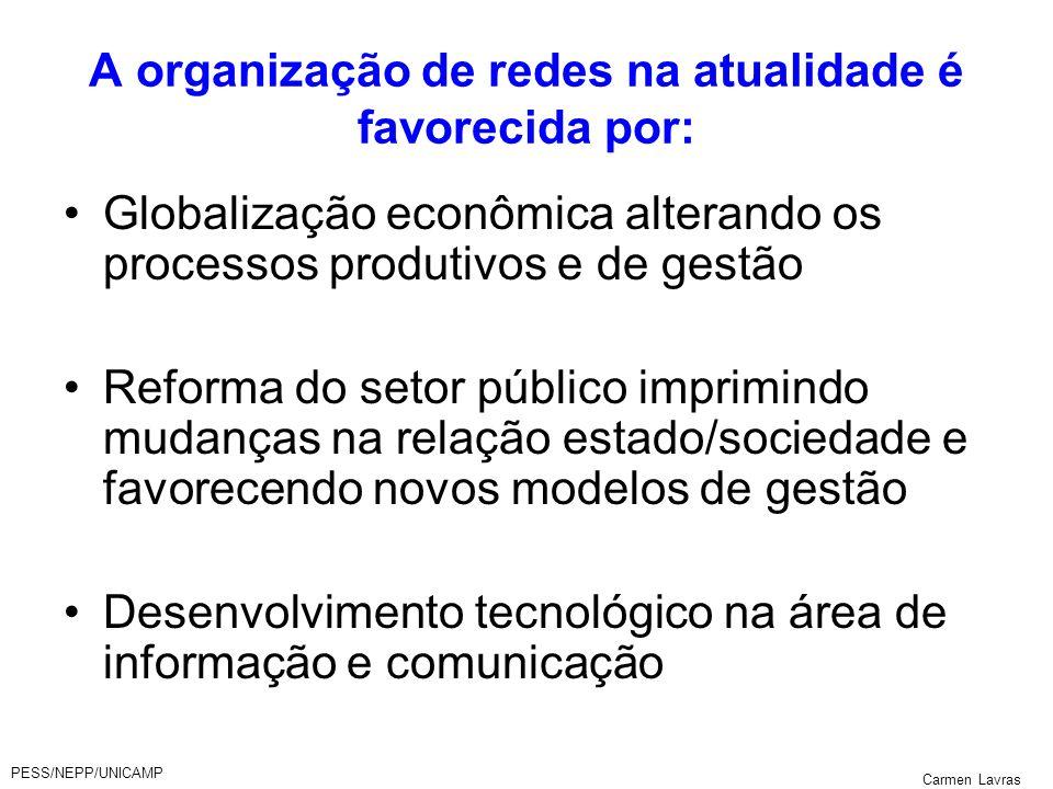 PESS/NEPP/UNICAMP Carmen Lavras A organização de redes na atualidade é favorecida por: Globalização econômica alterando os processos produtivos e de g