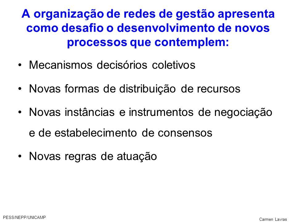 PESS/NEPP/UNICAMP Carmen Lavras A organização de redes de gestão apresenta como desafio o desenvolvimento de novos processos que contemplem: Mecanismo