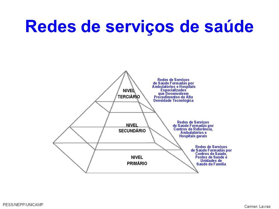 PESS/NEPP/UNICAMP Carmen Lavras Redes de serviços de saúde