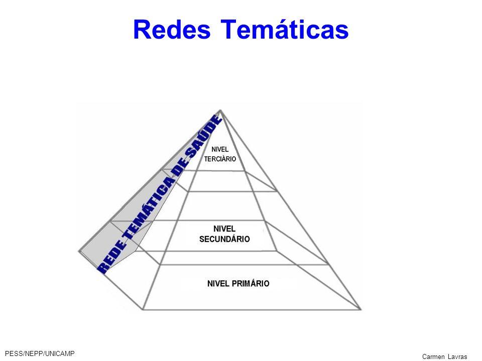PESS/NEPP/UNICAMP Carmen Lavras Redes Temáticas
