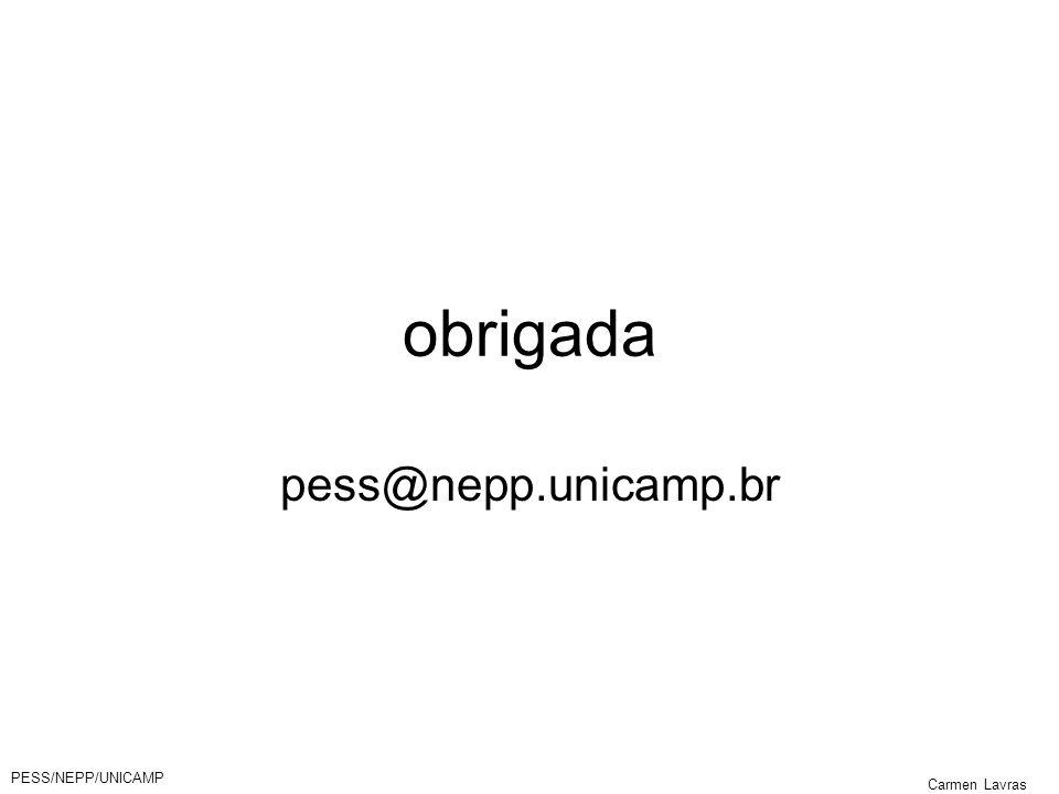 PESS/NEPP/UNICAMP Carmen Lavras obrigada pess@nepp.unicamp.br