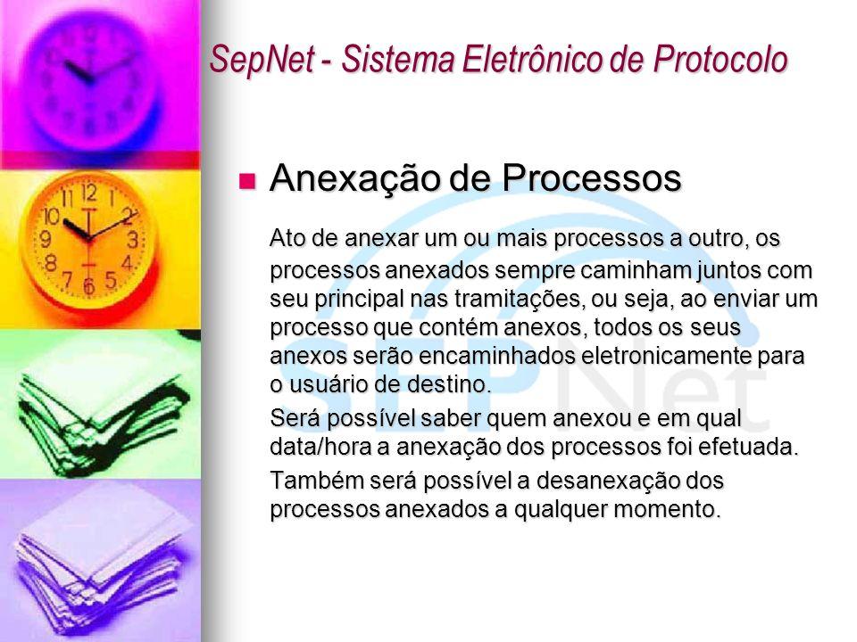 Anexação de Processos Anexação de Processos Ato de anexar um ou mais processos a outro, os processos anexados sempre caminham juntos com seu principal