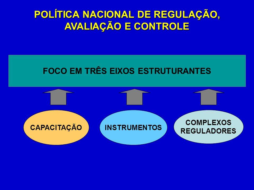 POLÍTICA NACIONAL DE REGULAÇÃO, AVALIAÇÃO E CONTROLE FOCO EM TRÊS EIXOS ESTRUTURANTES COMPLEXOS REGULADORES INSTRUMENTOSCAPACITAÇÃO