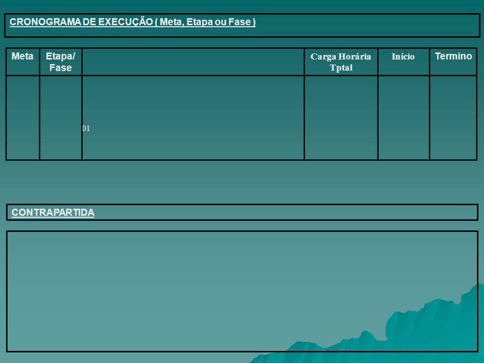 CRONOGRAMA DE EXECUÇÃO ( Meta, Etapa ou Fase ) 01 MetaEtapa/ Fase Carga Horária Tptal Início Termino CONTRAPARTIDA