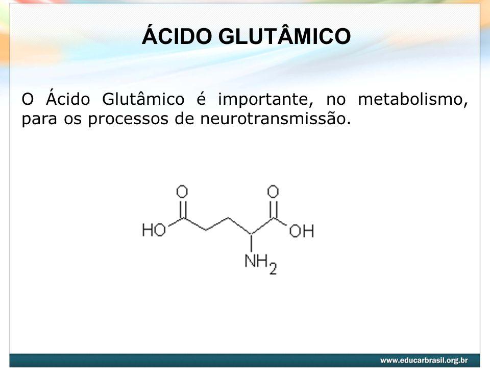 O Ácido Glutâmico é importante, no metabolismo, para os processos de neurotransmissão. ÁCIDO GLUTÂMICO