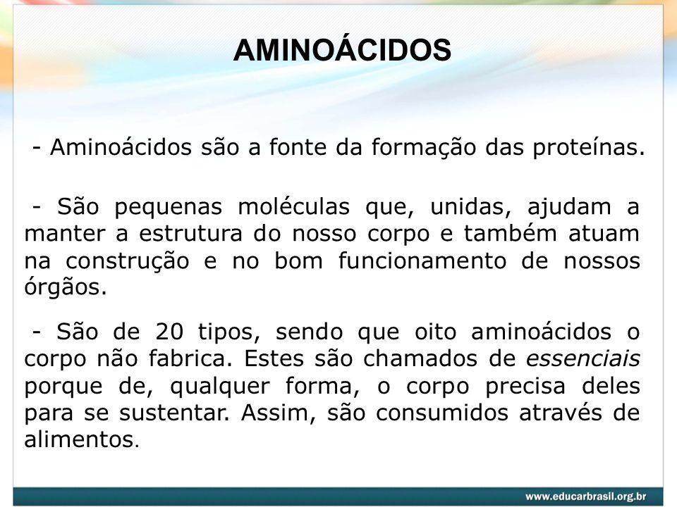 - Aminoácidos são a fonte da formação das proteínas. - São pequenas moléculas que, unidas, ajudam a manter a estrutura do nosso corpo e também atuam n
