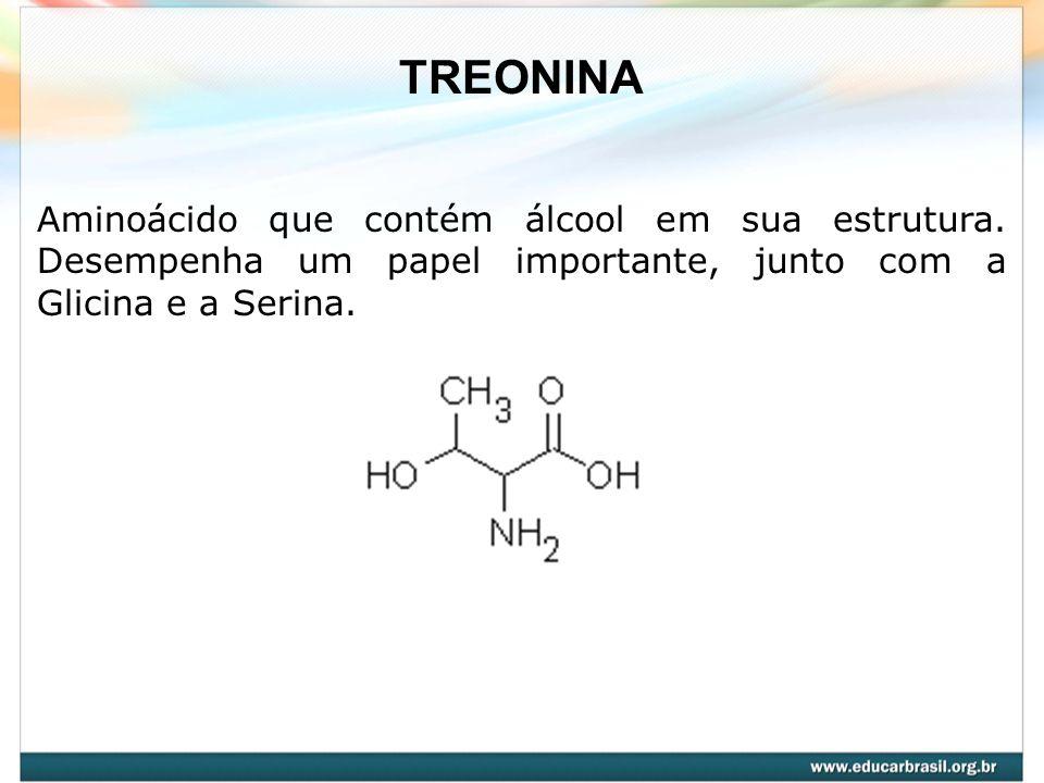 TREONINA Aminoácido que contém álcool em sua estrutura. Desempenha um papel importante, junto com a Glicina e a Serina.