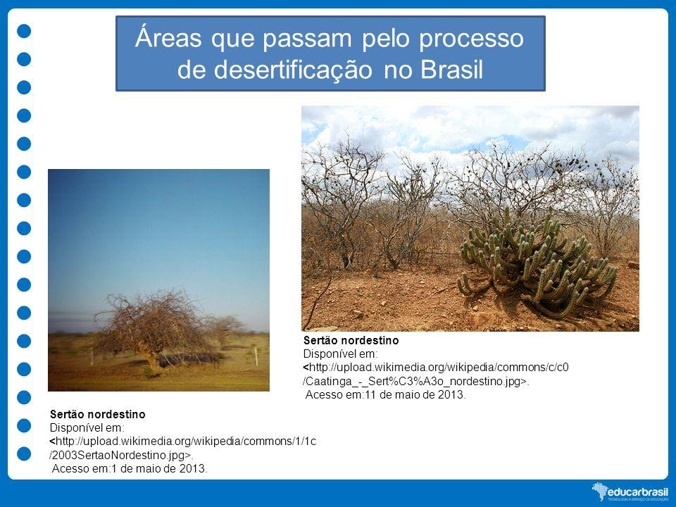 Áreas que passam pelo processo de desertificação no Brasil Sertão nordestino Disponível em:. Acesso em:1 de maio de 2013. Sertão nordestino Disponível