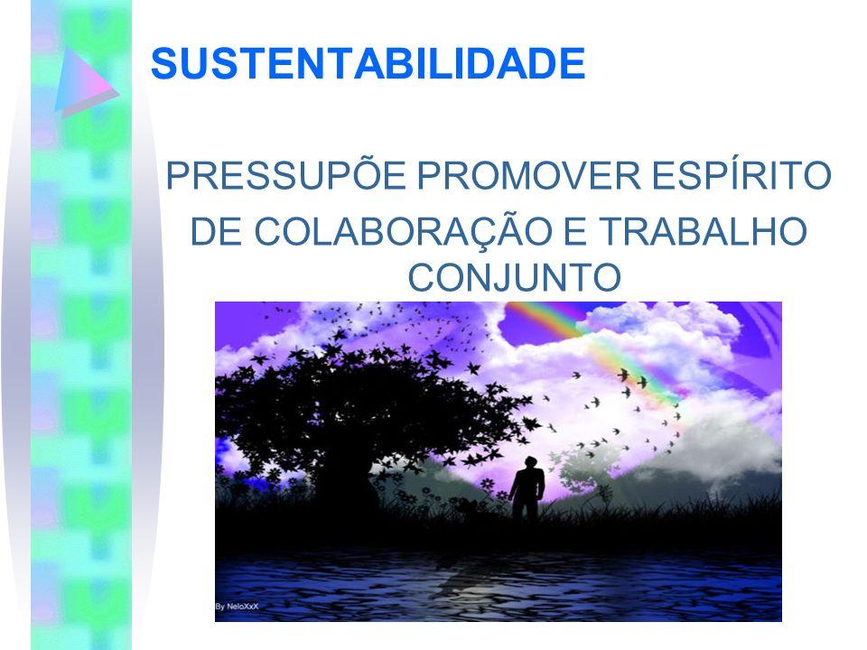 SUSTENTABILIDADE PRESSUPÕE PROMOVER ESPÍRITO DE COLABORAÇÃO E TRABALHO CONJUNTO