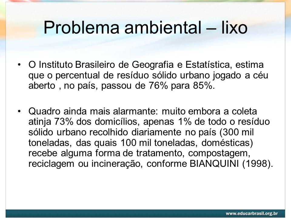 Problema ambiental – lixo O Instituto Brasileiro de Geografia e Estatística, estima que o percentual de resíduo sólido urbano jogado a céu aberto, no