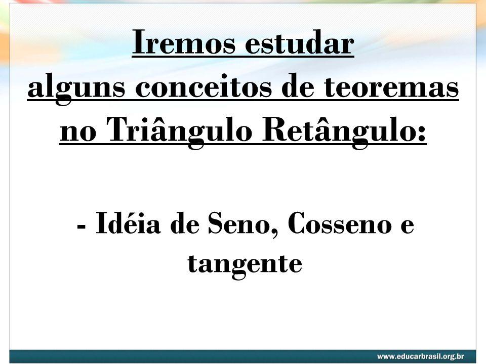 Iremos estudar alguns conceitos de teoremas no Triângulo Retângulo: - Idéia de Seno, Cosseno e tangente