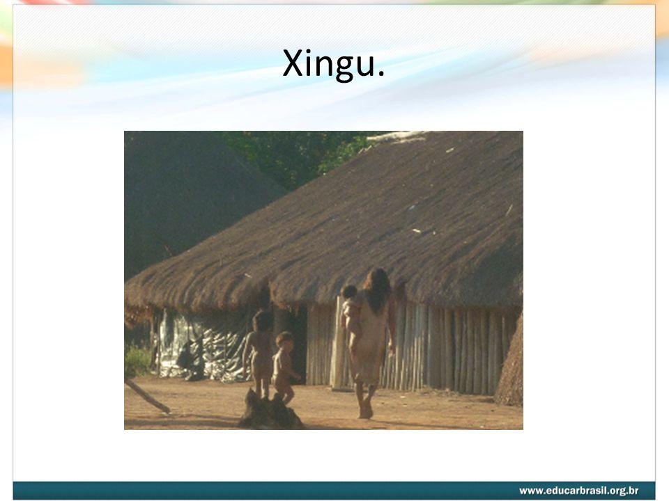 Xingu.