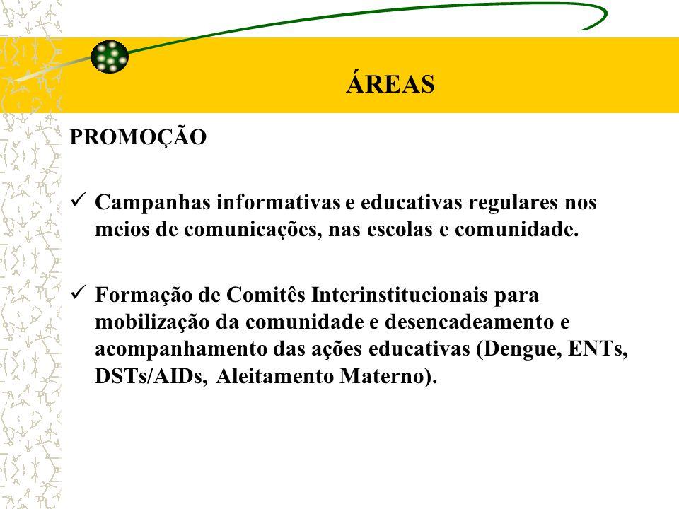 ÁREAS PROMOÇÃO Campanhas informativas e educativas regulares nos meios de comunicações, nas escolas e comunidade. Formação de Comitês Interinstitucion