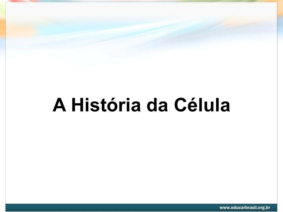 Célula É a unidade fundamental dos seres vivos Citologia é a área da Biologia que estuda a célula, no que diz respeito à sua estrutura e funcionamento.